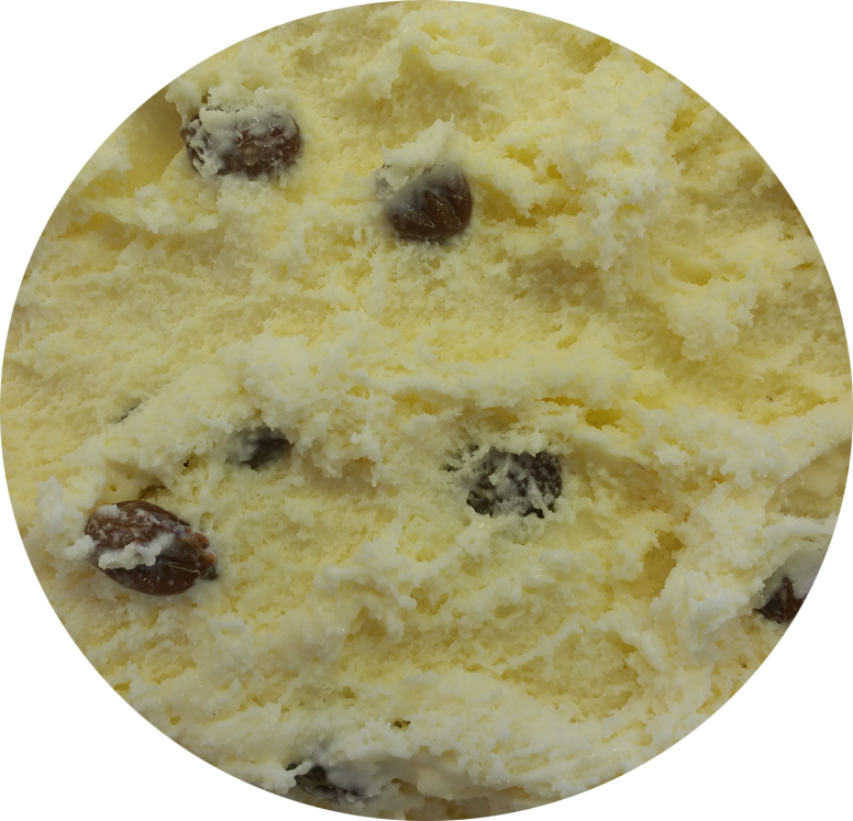 Rum And Raisin